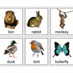 15 Animal Flash Cards | Kittybabylove | Animal Snap Cards Printable