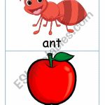 Ants In The Apple Flash Cards | Ants On The Apple Printable Cards