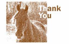 Horse Thank You Cards Printable