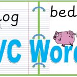 Cvc Words Reading Practice Real And Nonsense Words   Youtube | Nonsense Word Flash Cards Printables