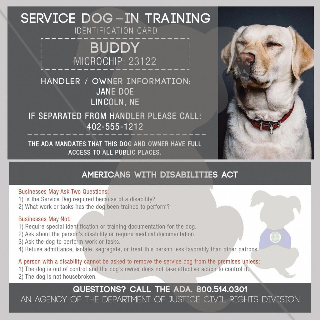 Discover More About Command For Dog Training. Daily Brushing Your | Printable Ada Service Dog Card