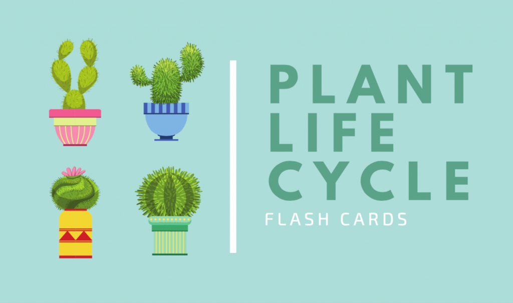 Free Online Flashcard Maker: Design Custom Flashcards - Canva | Free Printable Flash Card Maker