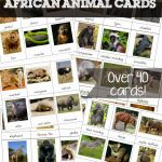 Free Printable African Animal Cards   Welcome To Mommyhood | Free Printable Animal Cards