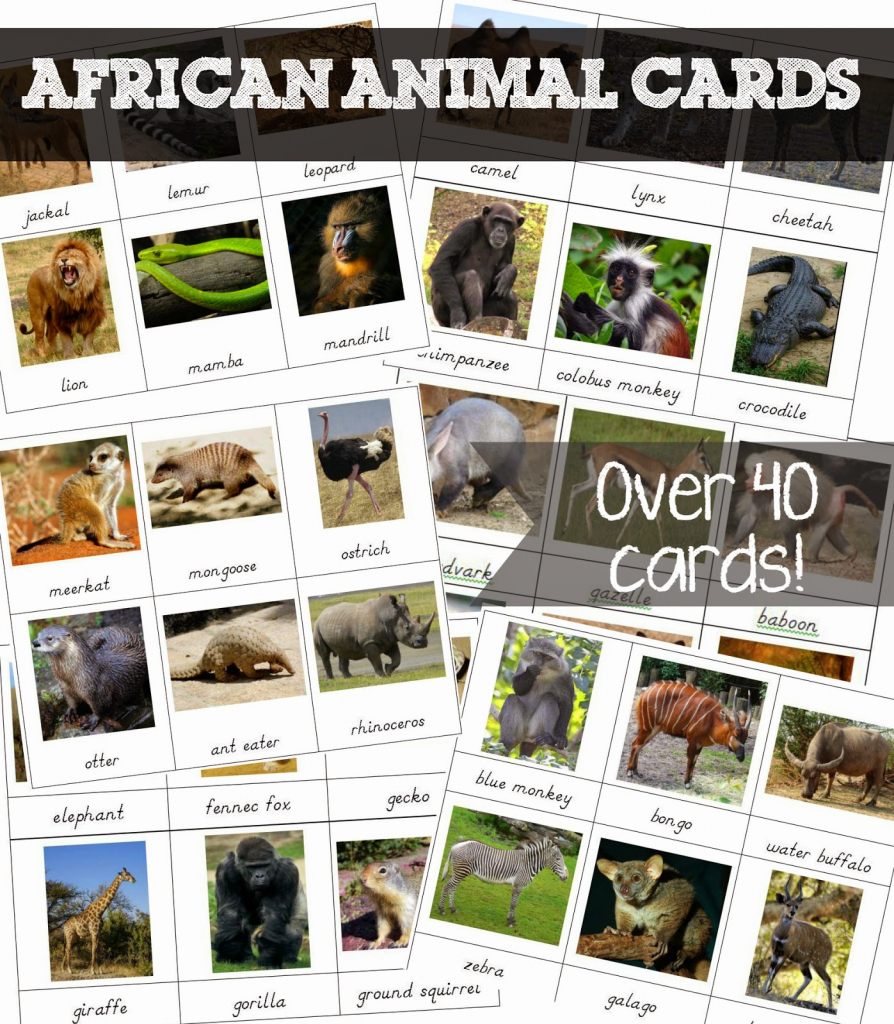 Free Printable African Animal Cards - Welcome To Mommyhood | Free Printable Animal Cards