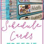 Freebie Schedule Cards | Classroom (When I Go Back :) | Classroom | Free Printable Picture Schedule Cards