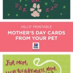 Mother's Day | Things We Love | Dog Mothers Day, Mothers Day Cards | Free Printable Mothers Day Card From Dog