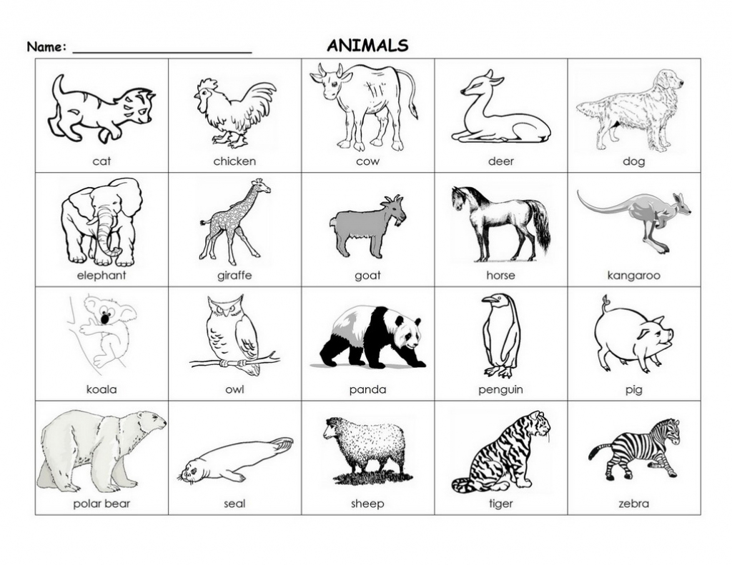 Printable Animal Flash Cards (87+ Images In Collection) Page 1 | Animal Snap Cards Printable