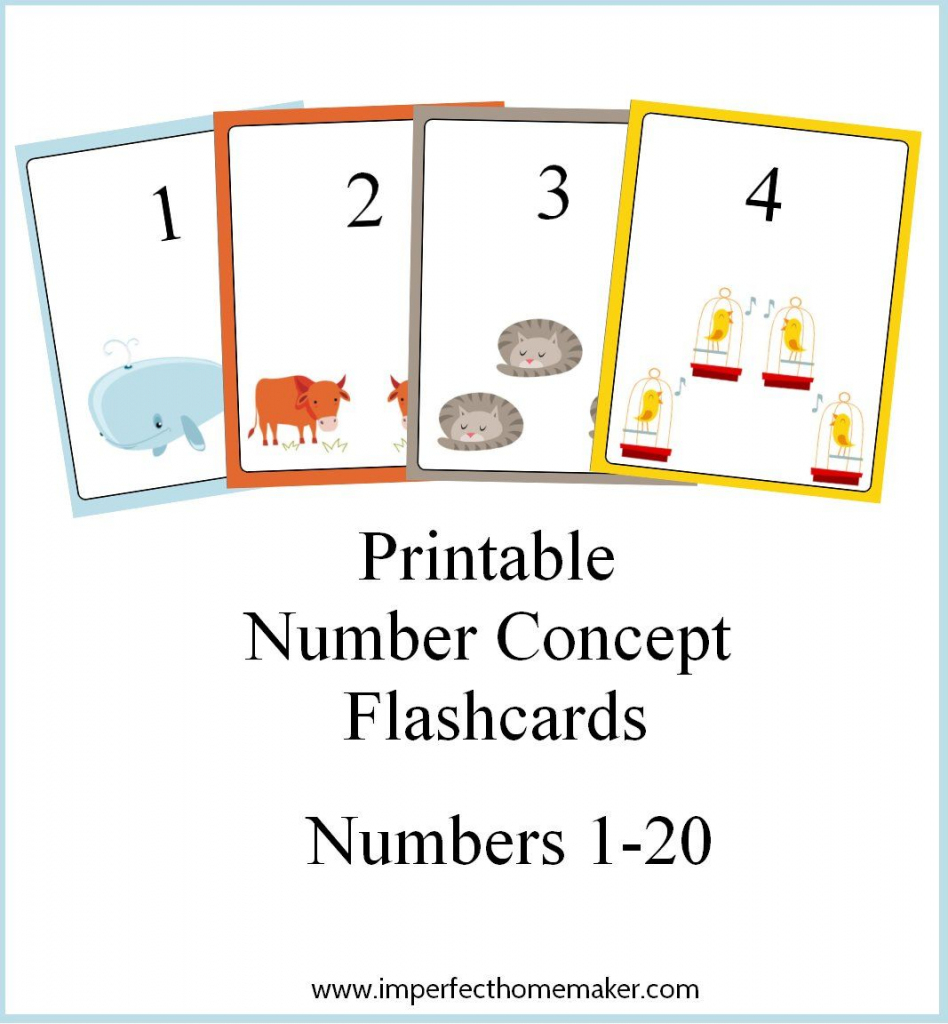 Printable Number Concept Flashcards | Free Number Printables For | Number Flash Cards Printable 1 20